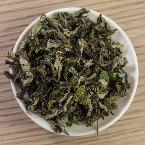 Трава лабазник (таволга вязолистная) – полезные, лечебные свойства и противопоказания