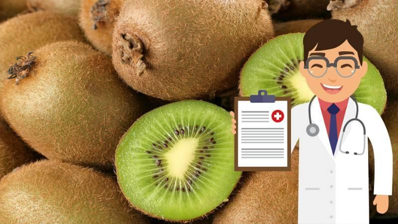 Киви польза и вред для организма, калорийность, витамины