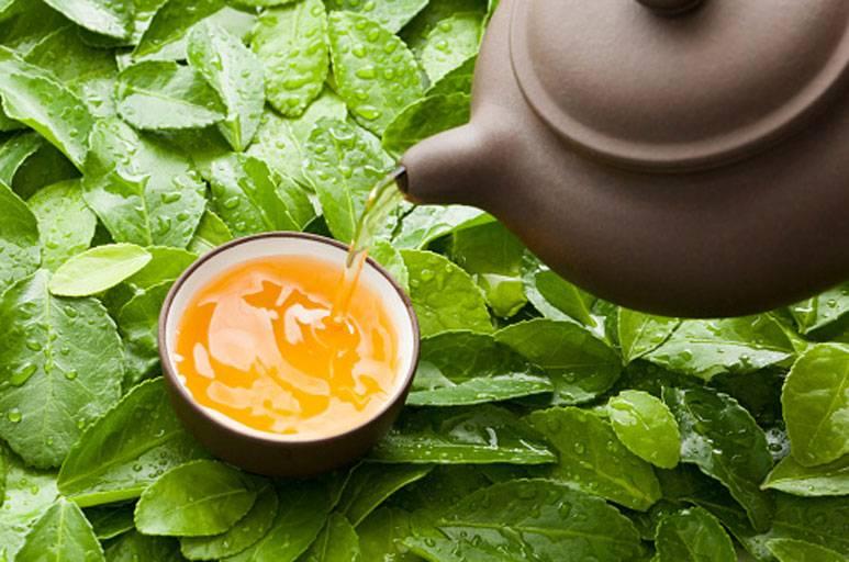 Чай с медом — чем полезен и в чем может быть вред | польза и вред