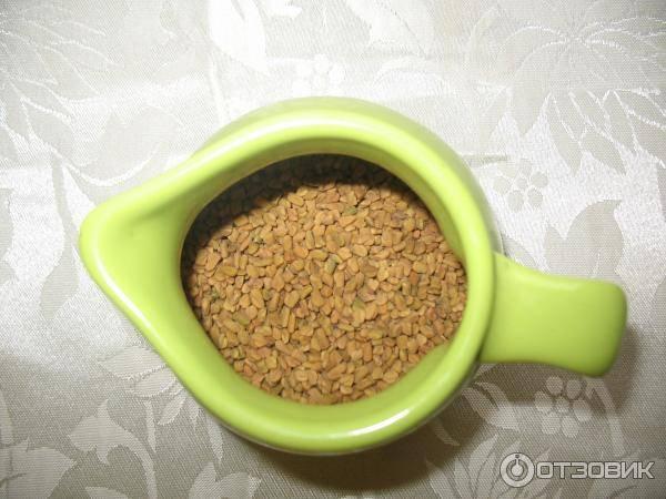 Желтый египетский чай Хельба — полезные свойства, как заваривать