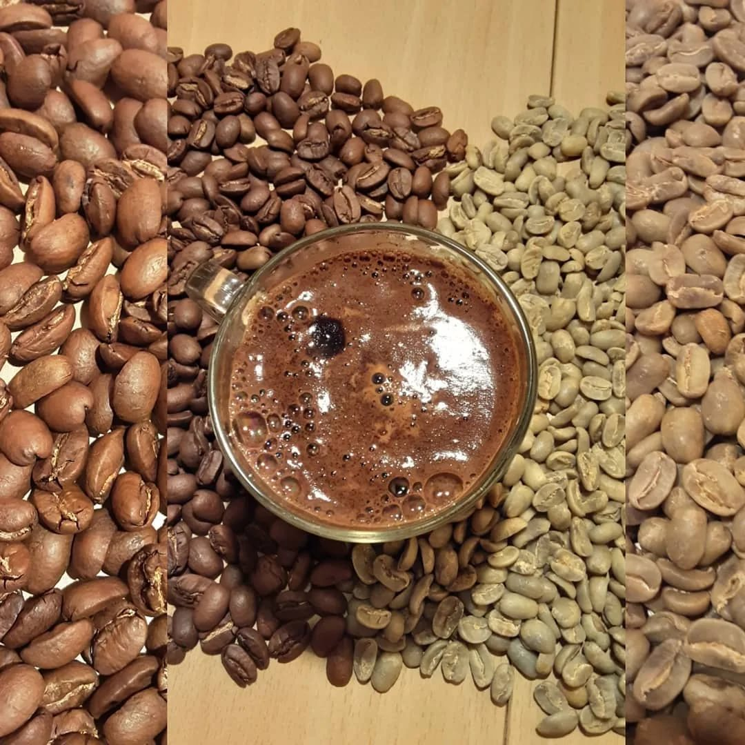 Сорт кофе марагоджип: вкус и аромат, 5 разновидностей по плантациям в никарагуа, колумбии, мексике, гватемале