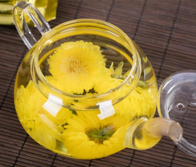 Чай из хризантемы - как заваривать, польза и вред