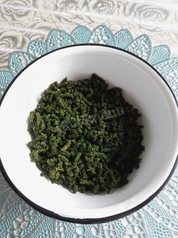 Листья смородины: полезные свойства и противопоказания, как собирать и сушить
