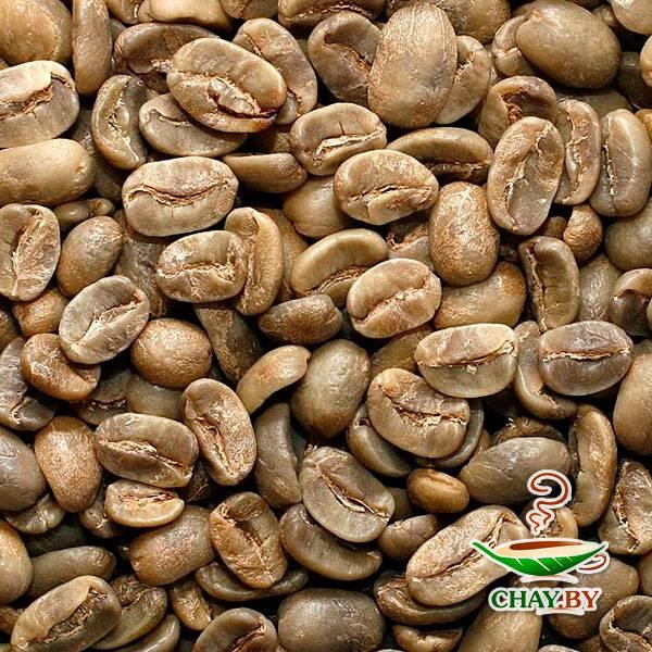 Никарагуа как производитель кофе - сорта кофе из никарагуы