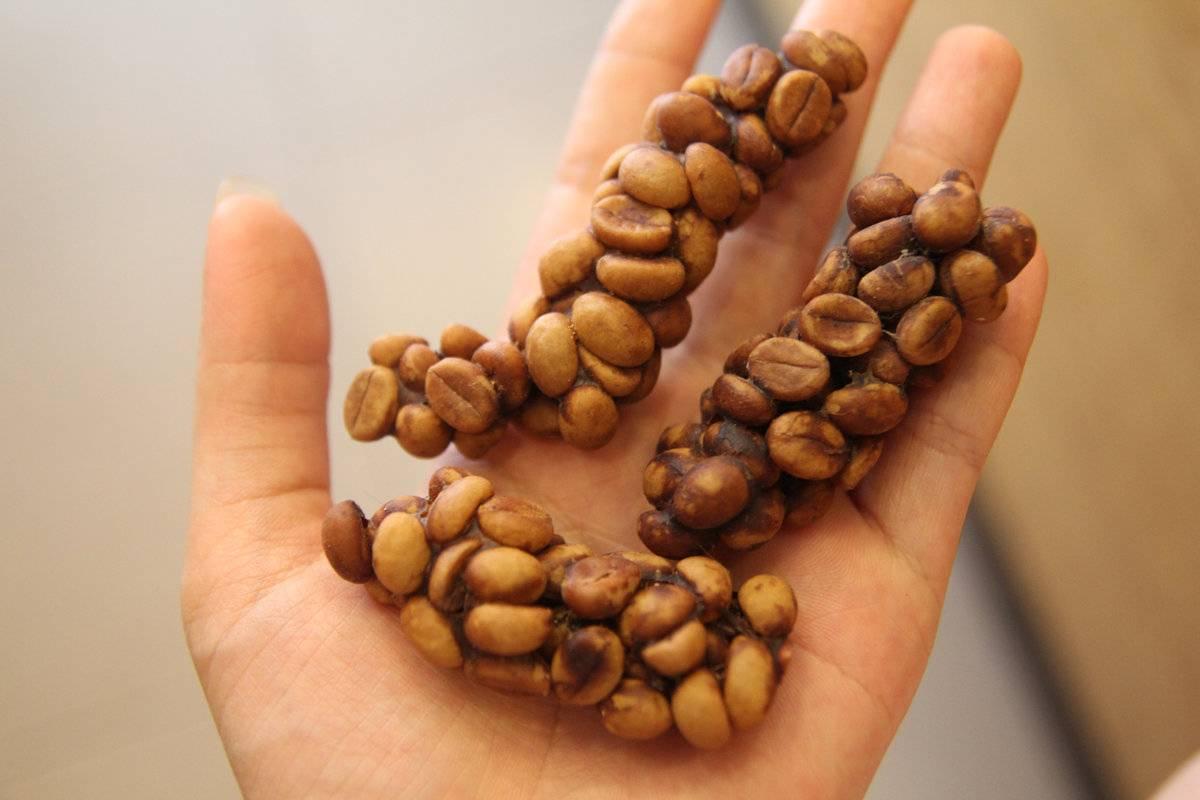 Кофе лювак: что это такое, из помета каких животных производят, как приготовить напиток