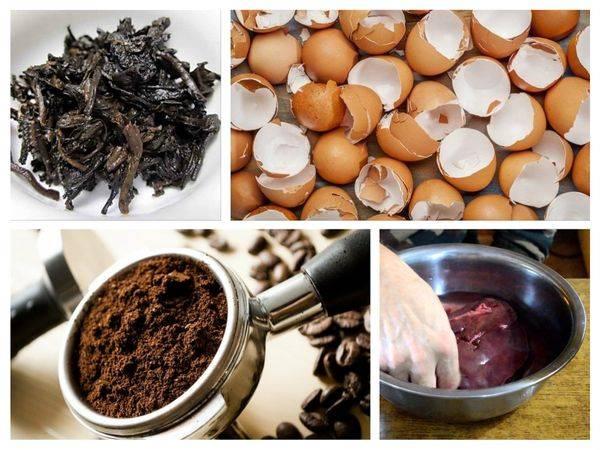Кофейная гуща как удобрение для растений – как использовать