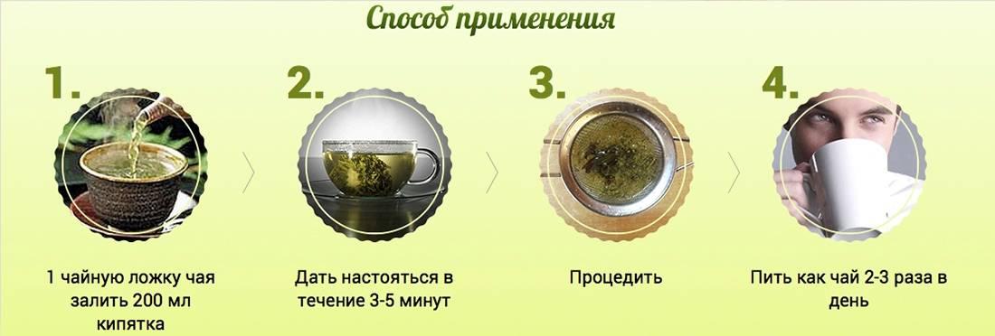 Монастырский чай от простатита: состав белорусского сбора, показания к применению, инструкция и отзывы