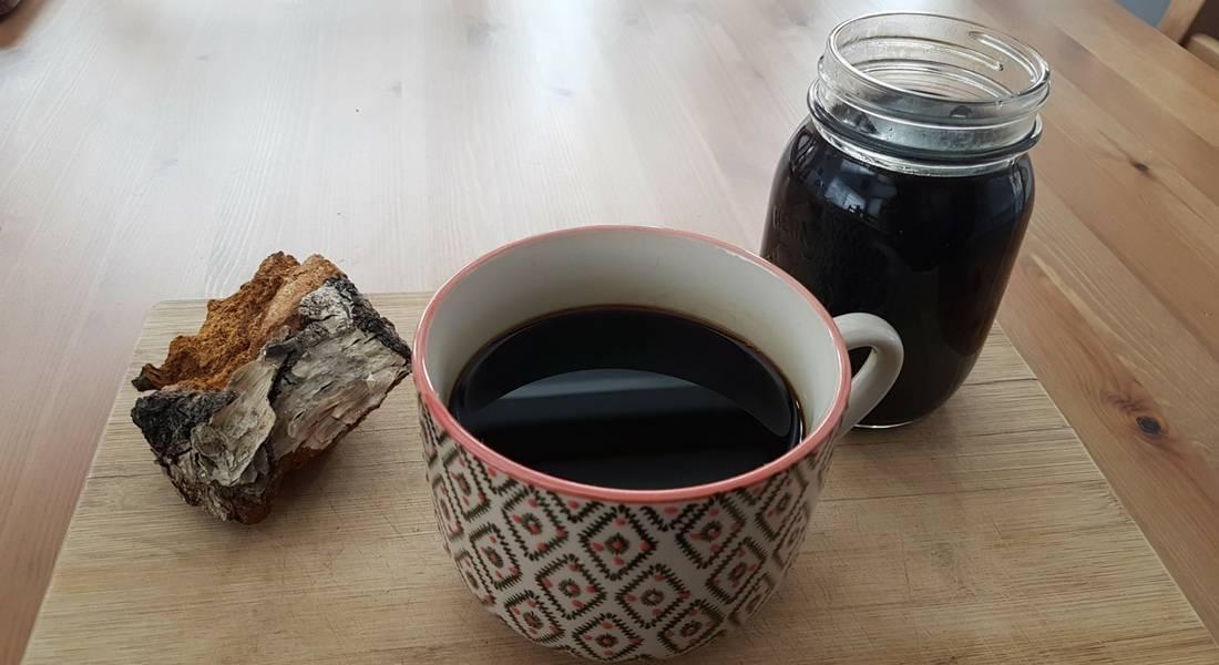 Чудодейственный чай из березовой чаги. как приготовить и принимать чагу