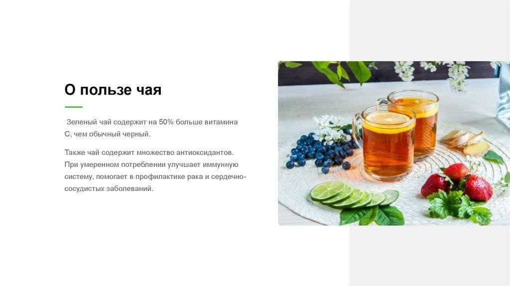 Зеленый чай — польза и вред для организма | польза и вред
