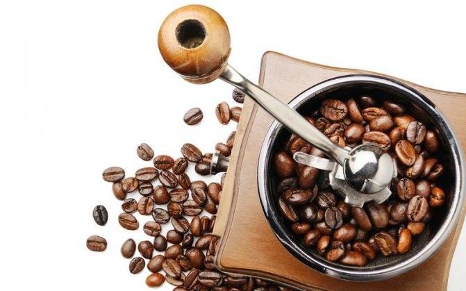 Кофемолка своими руками: особенности сборки ручной и механической кофемолок.