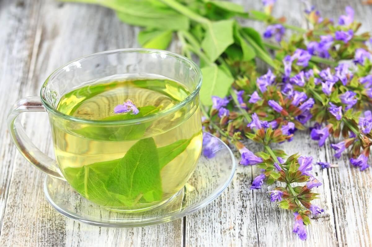 Чай с волшебным цветком — хризантемой