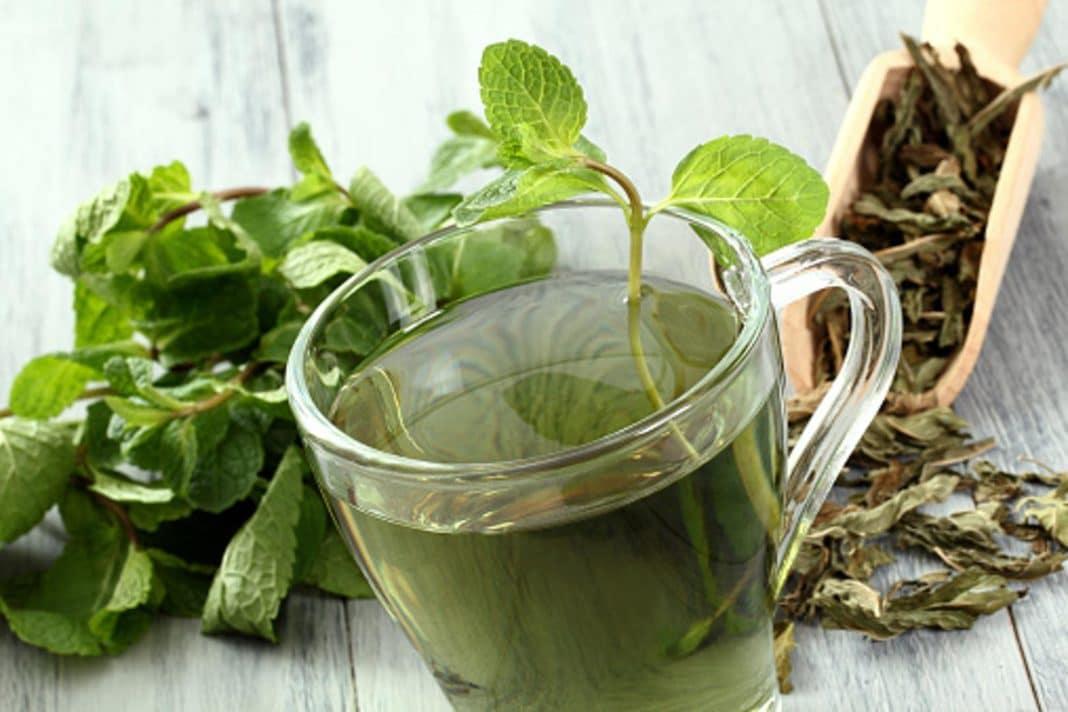 Как принимать монастырский чай