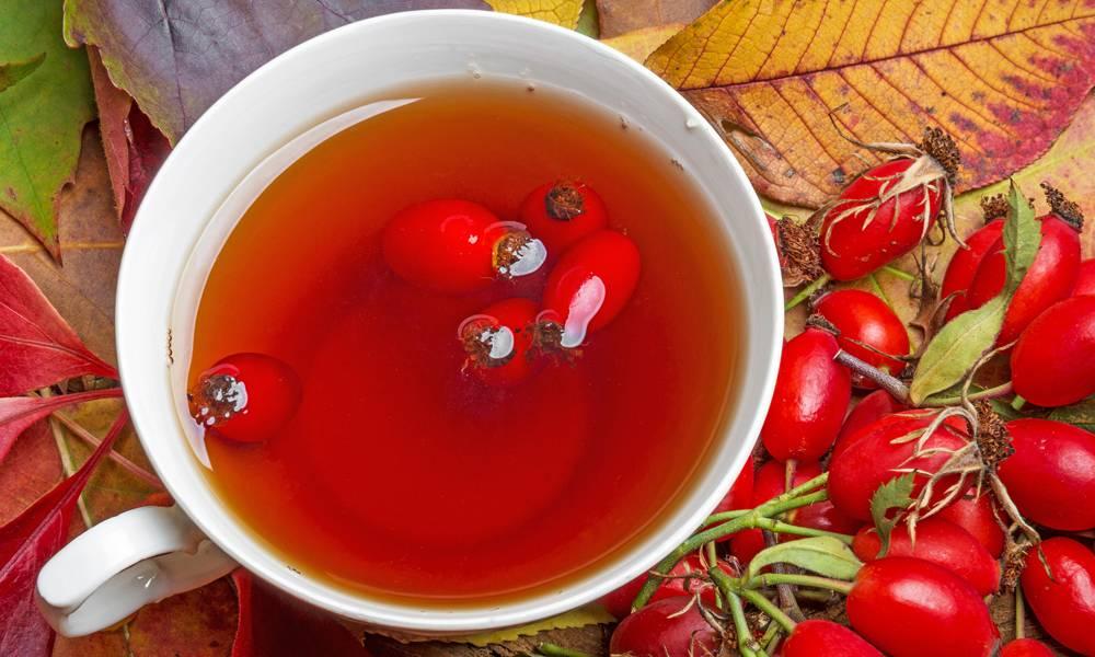 Польза и вред ягоды от ста болезней: секреты применения черешни для здоровья