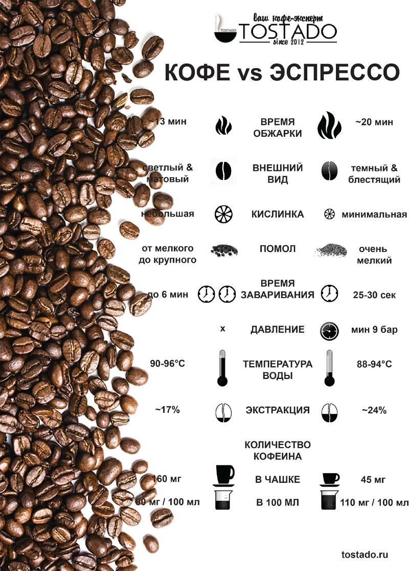Классификация кофе: различия кофейных зерен и напитков по основным признакам