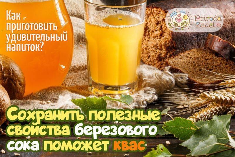 Квас из березового сока с изюмом - рецепт с фото пошагово