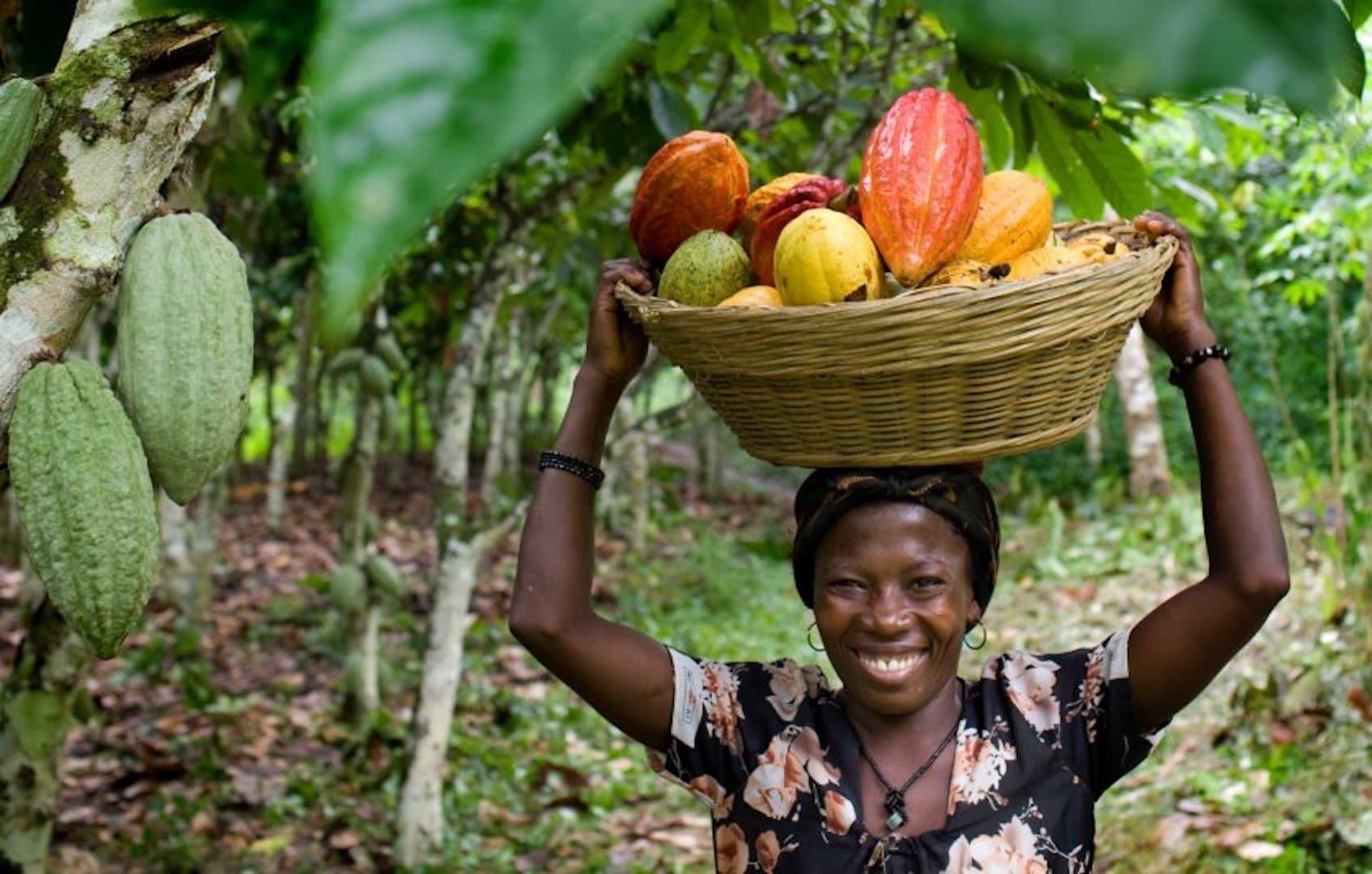 Кот-д'ивуар — информация о стране, достопримечательности, история   новый географический сайт