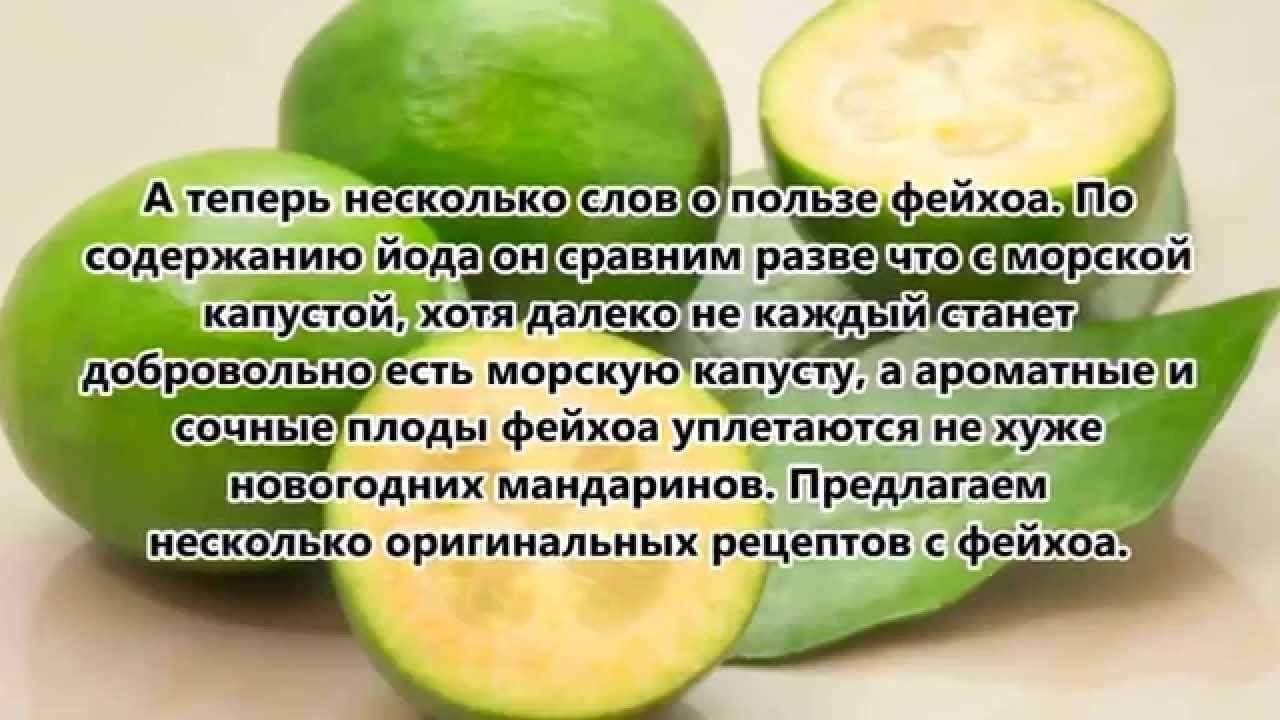Как правильно употреблять фейхоа? полезные свойства фрукта