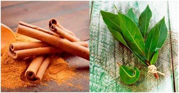 Лавровый лист и корица: чудесное средство для похудения