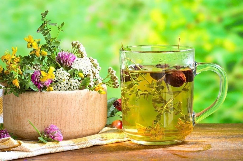Аптечные травяные чаи от кашля