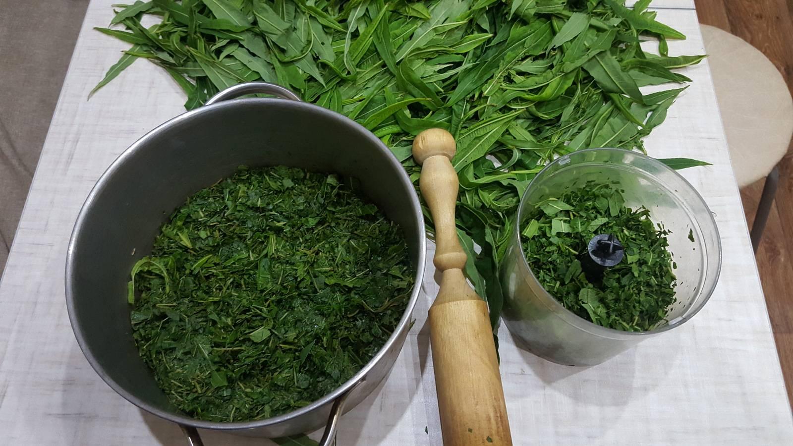 Как собирать и правильно сушить иван-чай в домашних условиях: технология процесса ферментации
