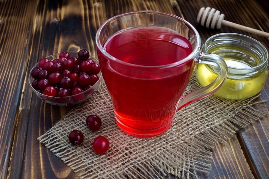 Отвар из клюквы: рецепт, полезные свойства, польза и вред для здоровья | народная медицина