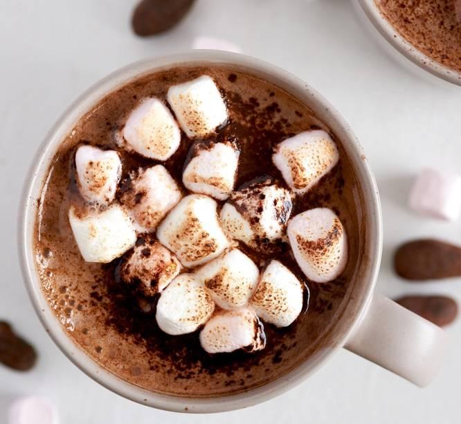 Чем можно заменить какао порошок в вепечке, тортах и других рецептах