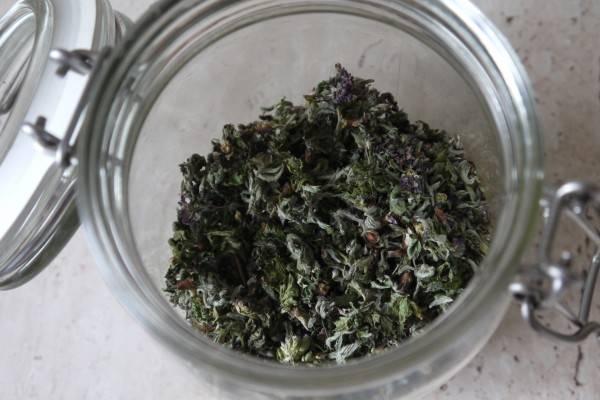 Малиновый чай - полезные свойства и рецепты приготовления