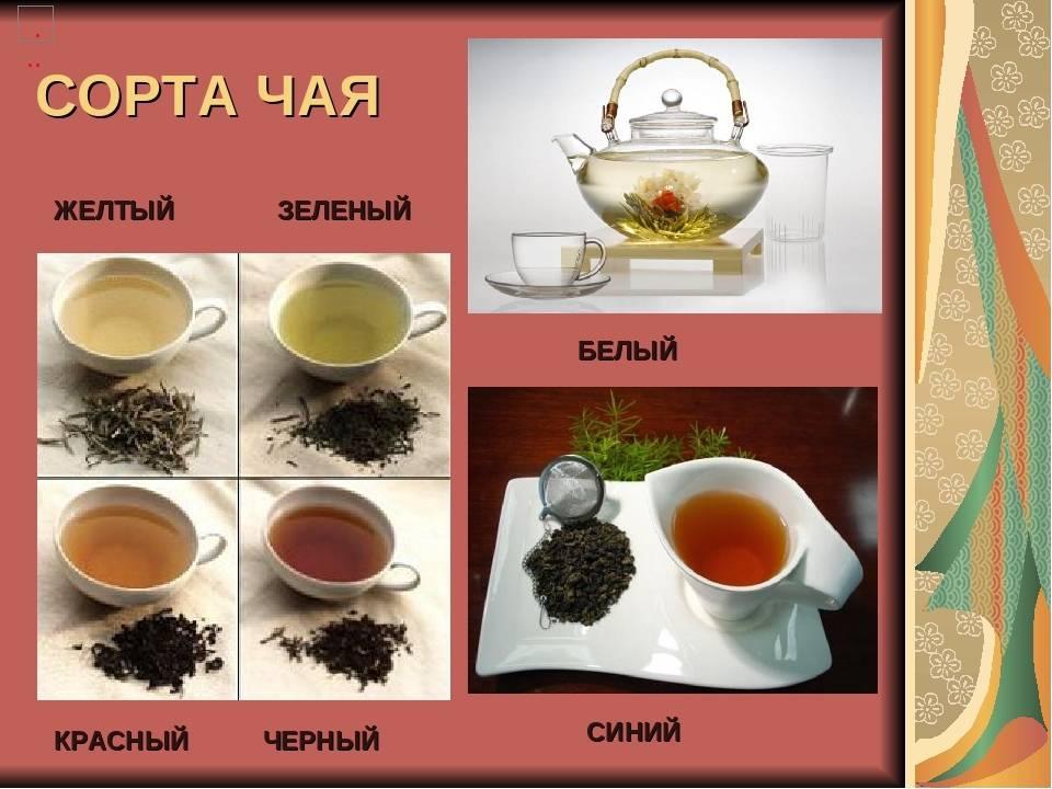 Китайский чай: виды, отличия и чайная церемония | выпейменя.рф