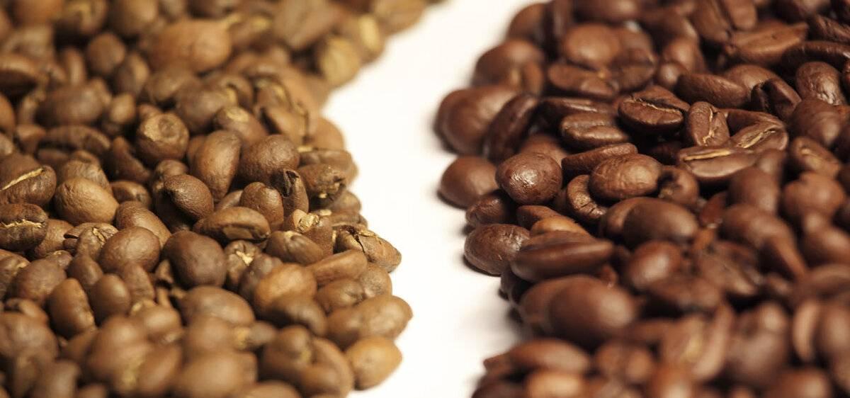 Виды и разновидности кофейных зерен и напитков