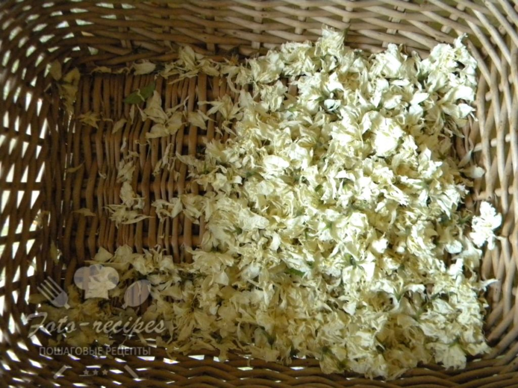 Цветы жасмина для чая