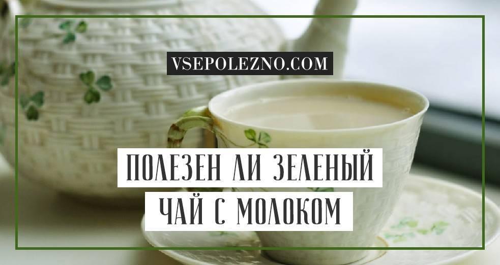 Зеленый чай с молоком для похудения: рецепты, польза и вред