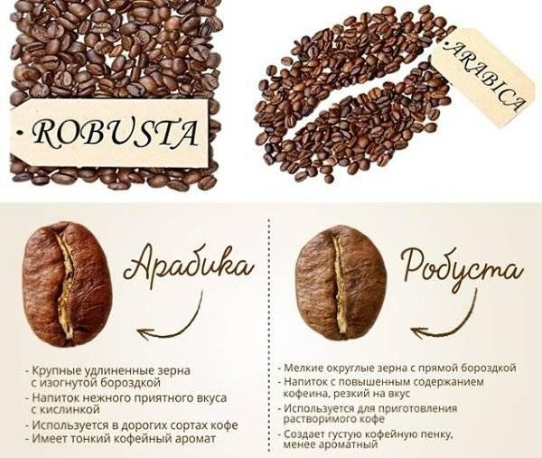 Что такое кофе эксцельза