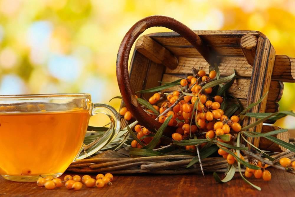 Облепиховый чай, рецепты как ресторанах. полезные рецепты для детей