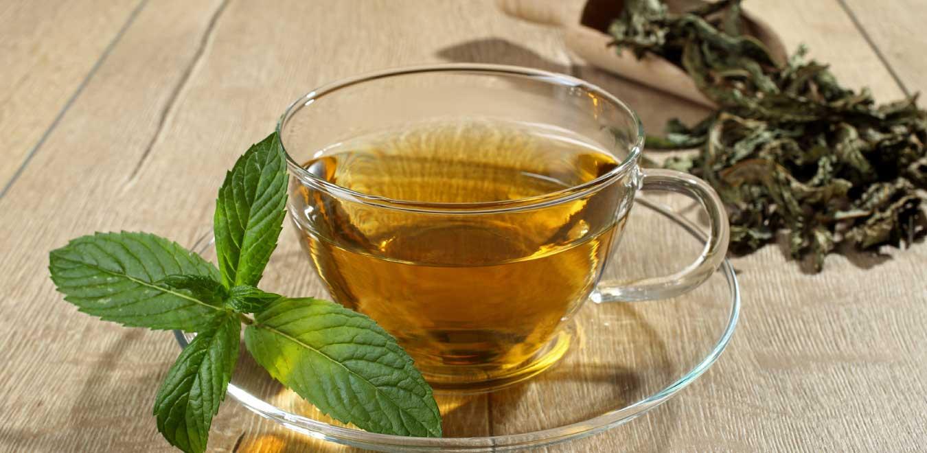 Травы и садовые растения для чая: польза, сбор и приготовление