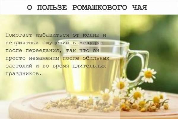 Можно ли мелиссу беременным, какова ее польза, когда она противопоказана, как правильно пить чай?