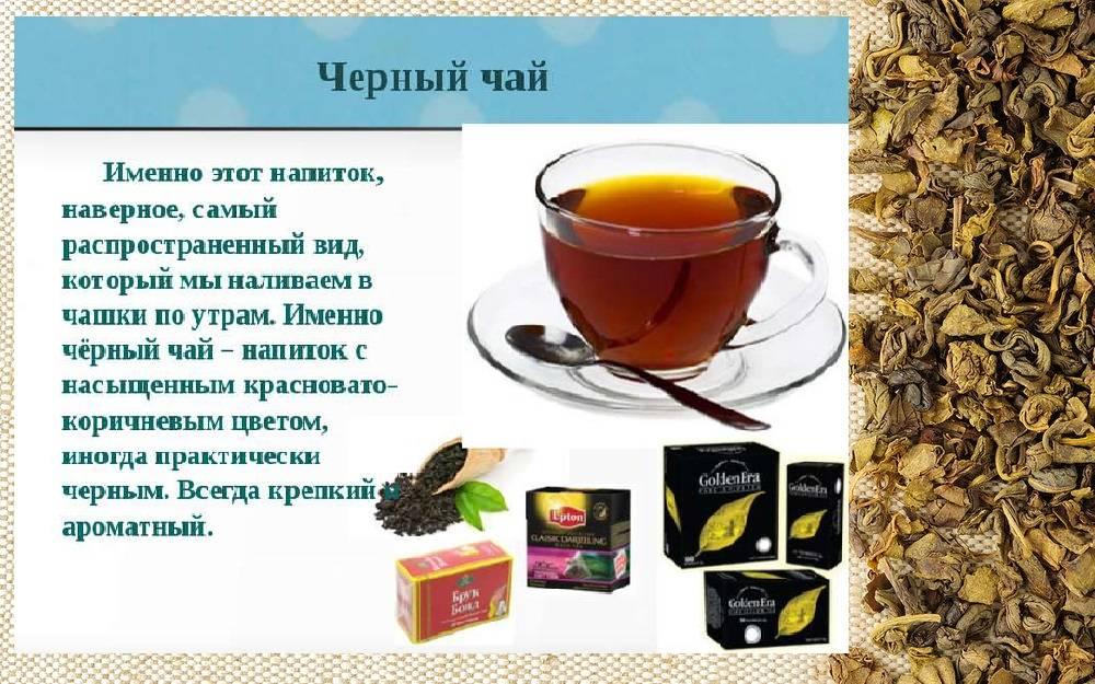 Как заваривать листовой чай: 11 шагов