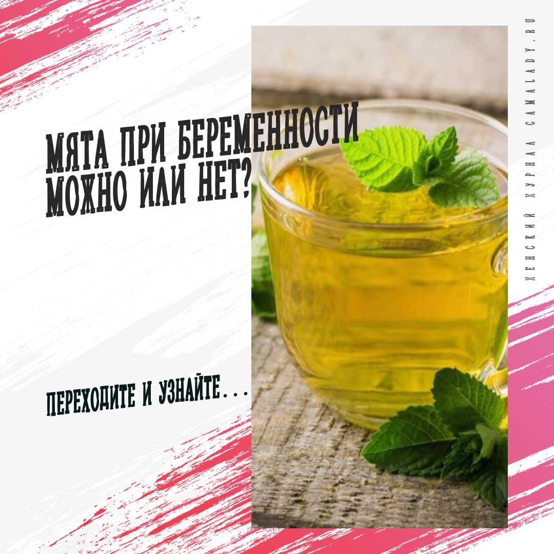 Чай с мятой при беременности - чёрный и зелёный: можно ли, противопоказания и пр