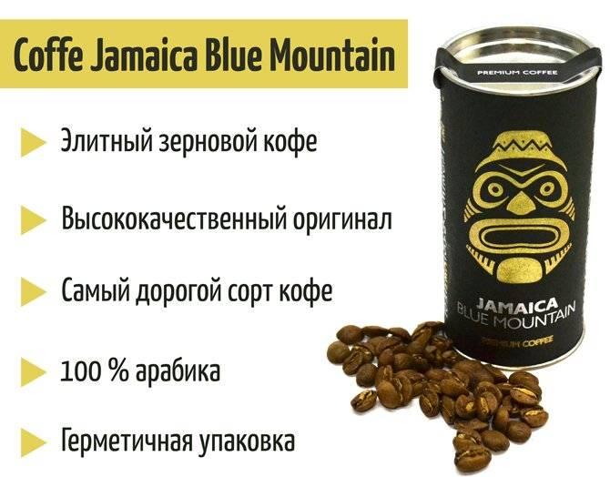 Любимый кофе джона леннона и яна флеминга. 15 тысяч рублей за килограмм