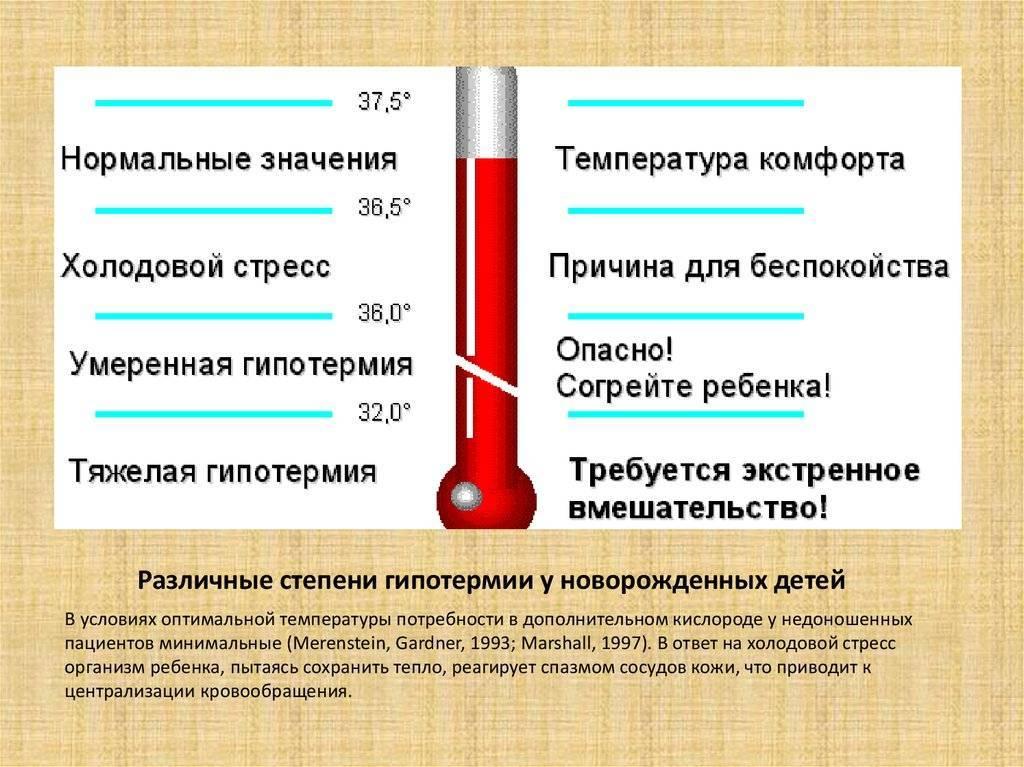 Как поднять температуру тела с помощью кофе, через сколько поднимется, если его съесть