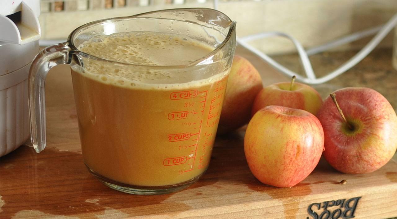 Рецепт заготовки яблочного сока через соковыжималку на зиму