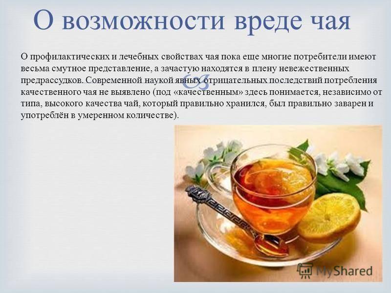 Чай: польза и вред