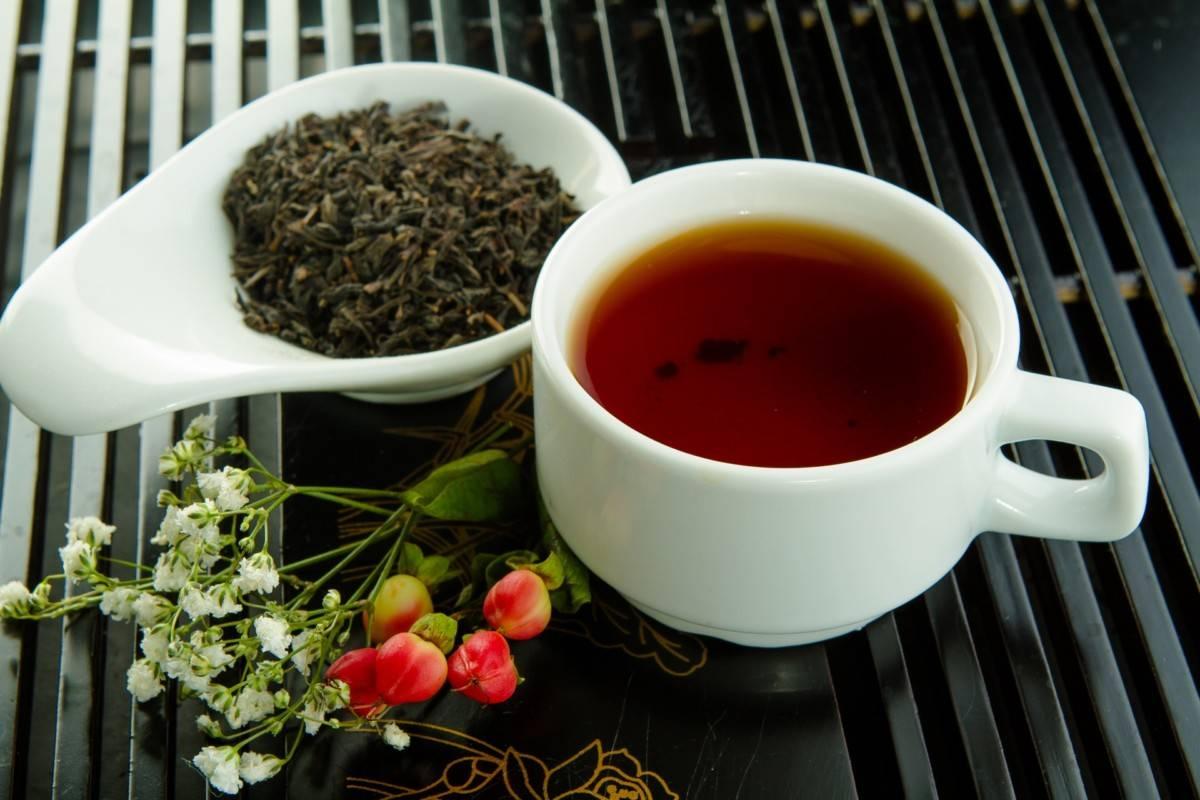 Зеленый чай на ночь: польза и вред