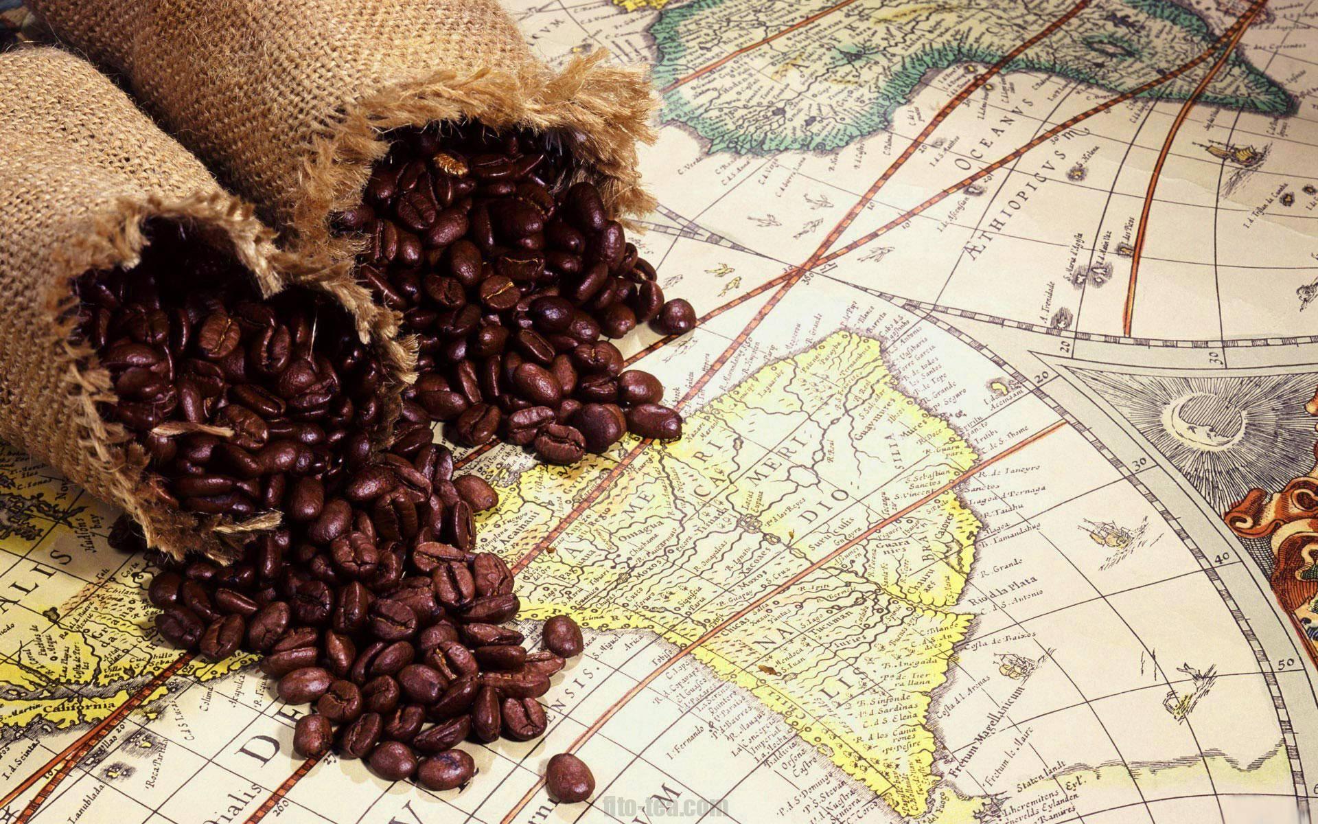 Интересные факты о кофе: выращивание, история, употребление
