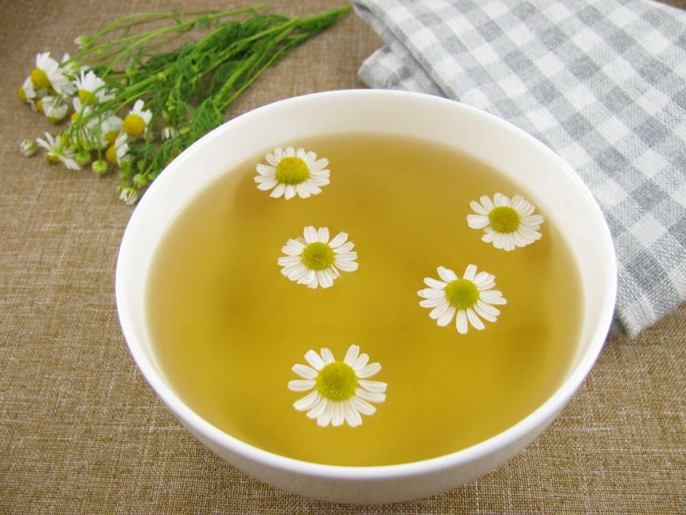 Аллергия на ромашку | компетентно о здоровье на ilive