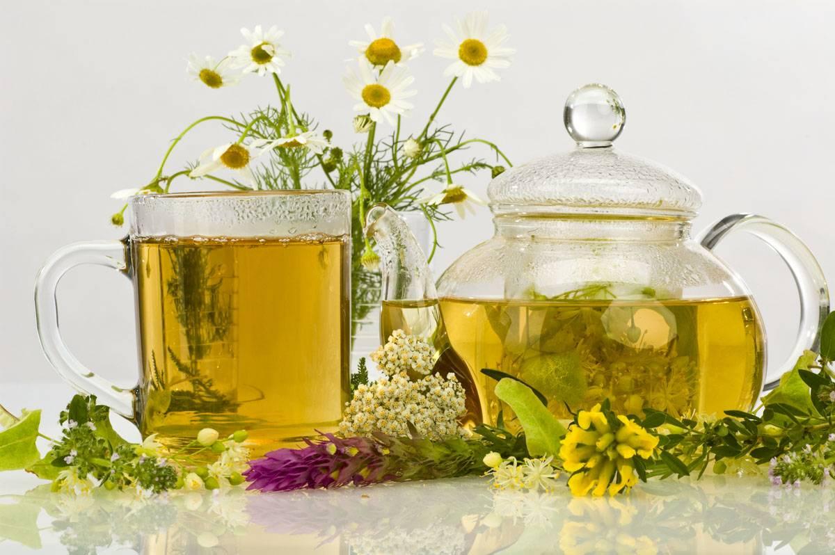 Успокаивающий чай из трав перед сном, для нервной системы: рецепт приготовления и особенности применения