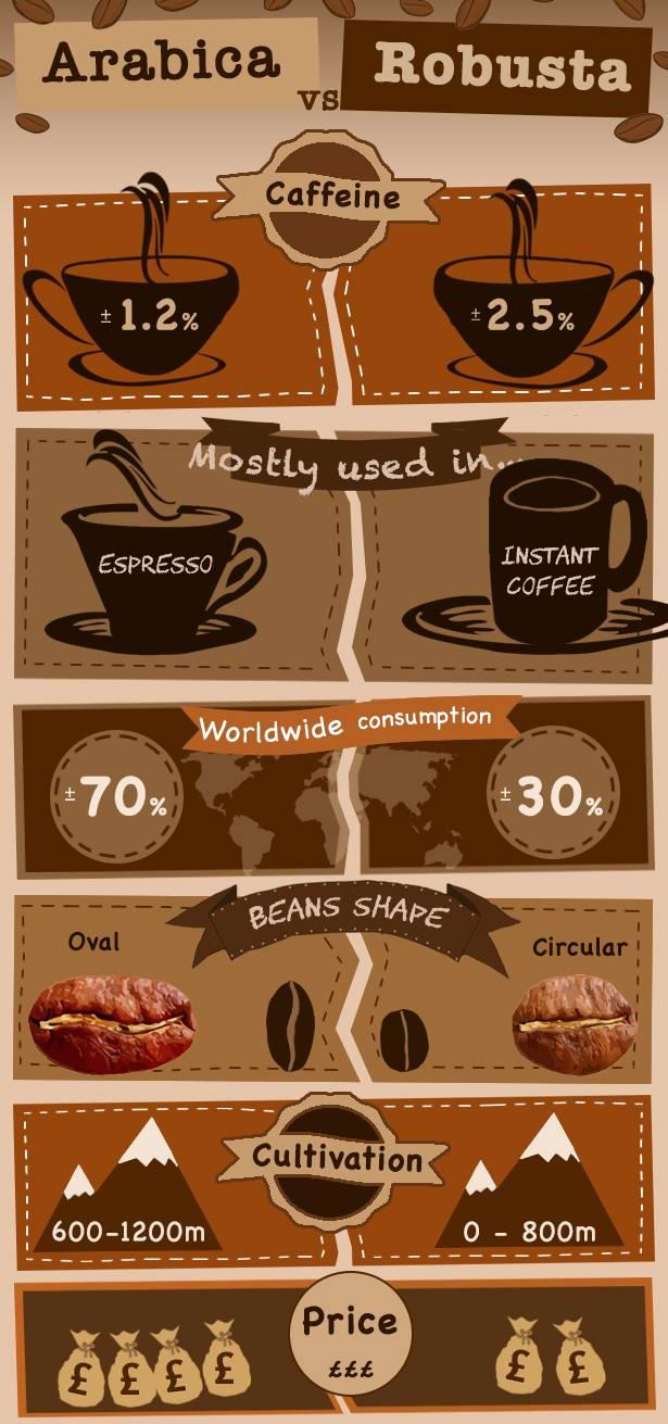 Кофе робуста: свойства, виды и отличия от арабики