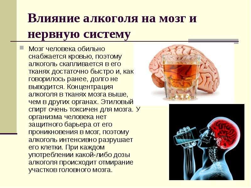 Кофе расширяет или сужает сосуды головного мозга? влияние кофеина на здоровье