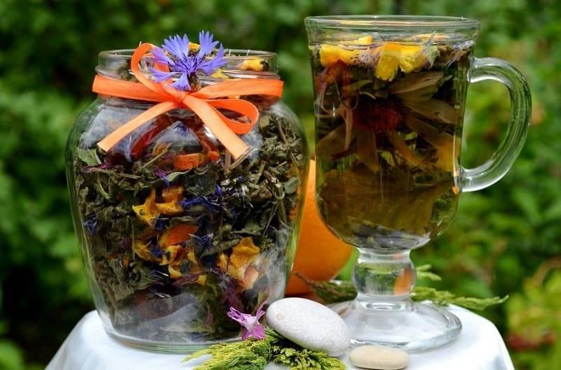 Травы в чай список: рецепты приготовления на каждый день