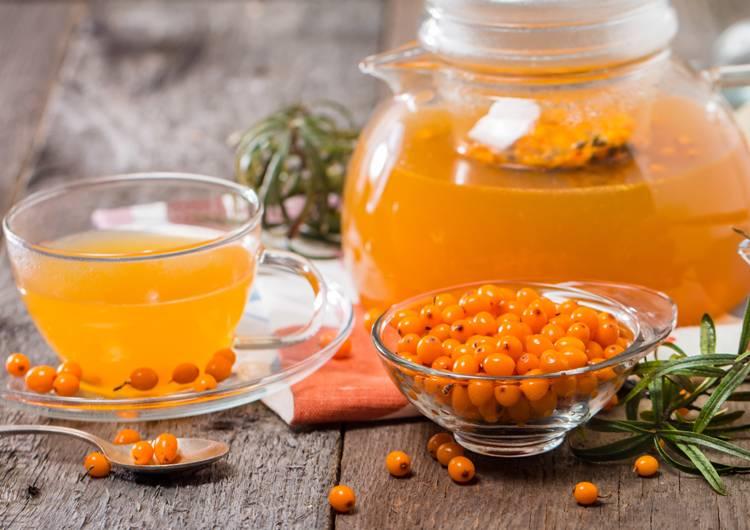 Рецепты чая из облепихи — как приготовить вкусный и полезный напиток. облепиховый чай как в шоколаднице