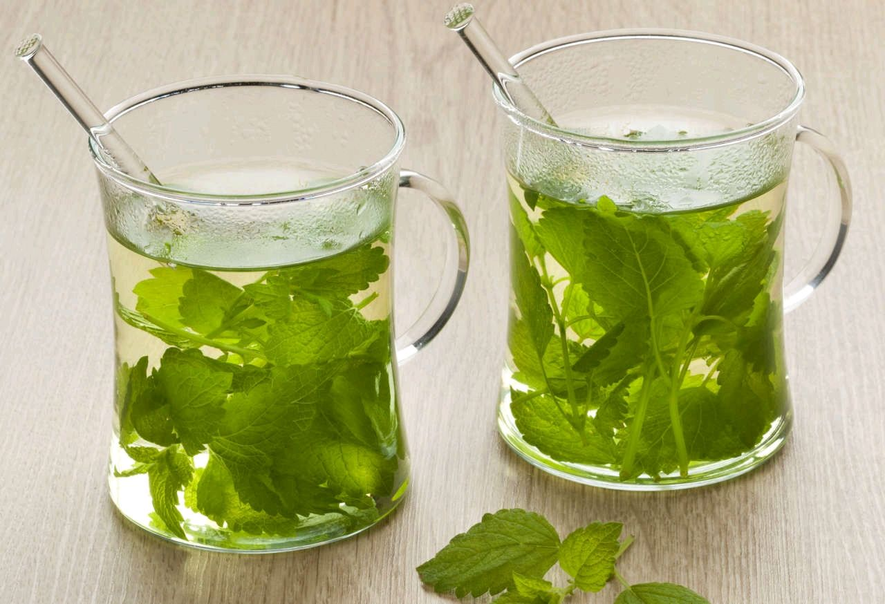 Если чай — то мятный: полезный успокаивающий напиток